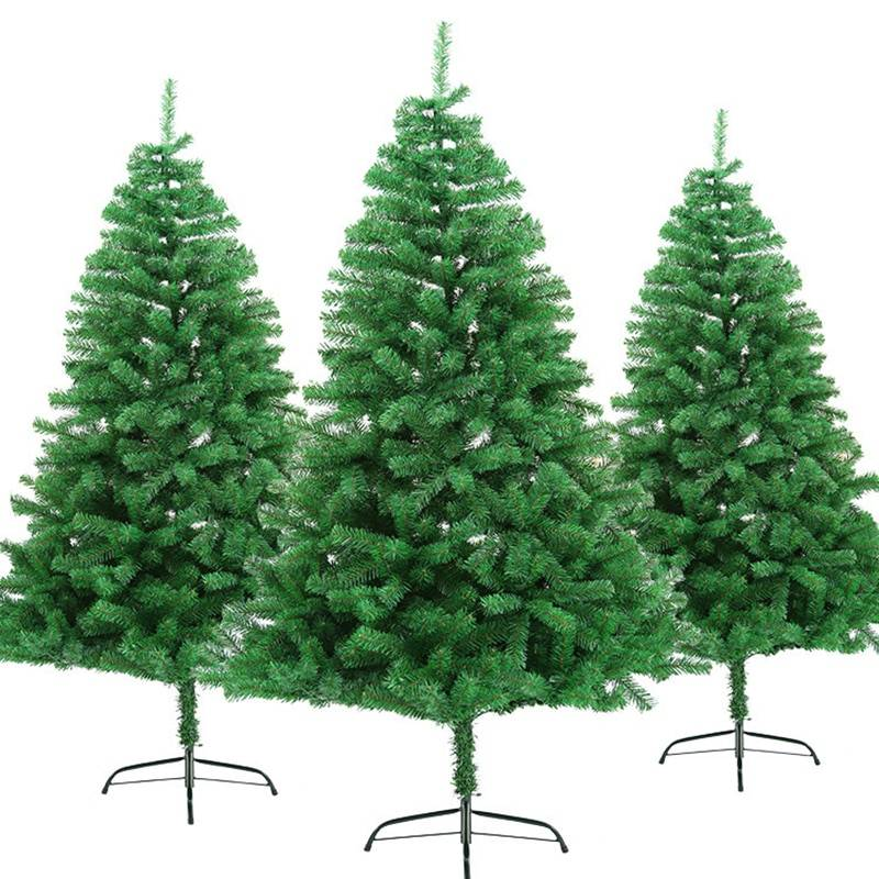 Various Sized Traditional Green Colored Christmas Tree